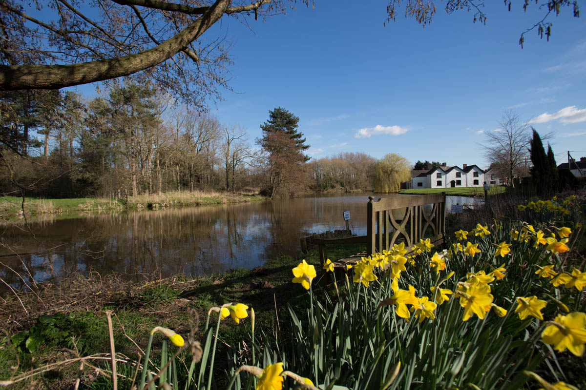 Picturesque spring view of a fishing pond, with the Grade II listed Aldersey's Pool Farm in the background.