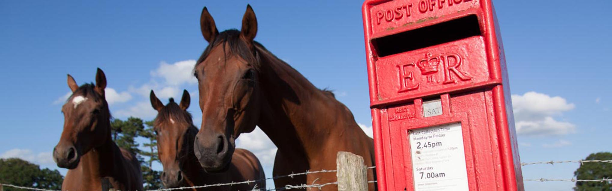 Village of Coddington, England. Picturesque view of a red Post Office letter post box with horses in the background.
