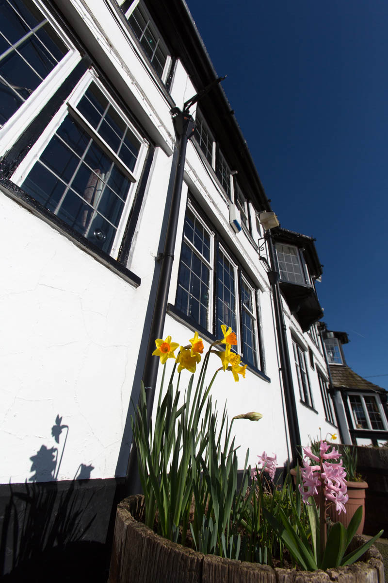 Spring low angle view of Handley's Calveley Arms restaurant and pub, on Whitchurch Road.