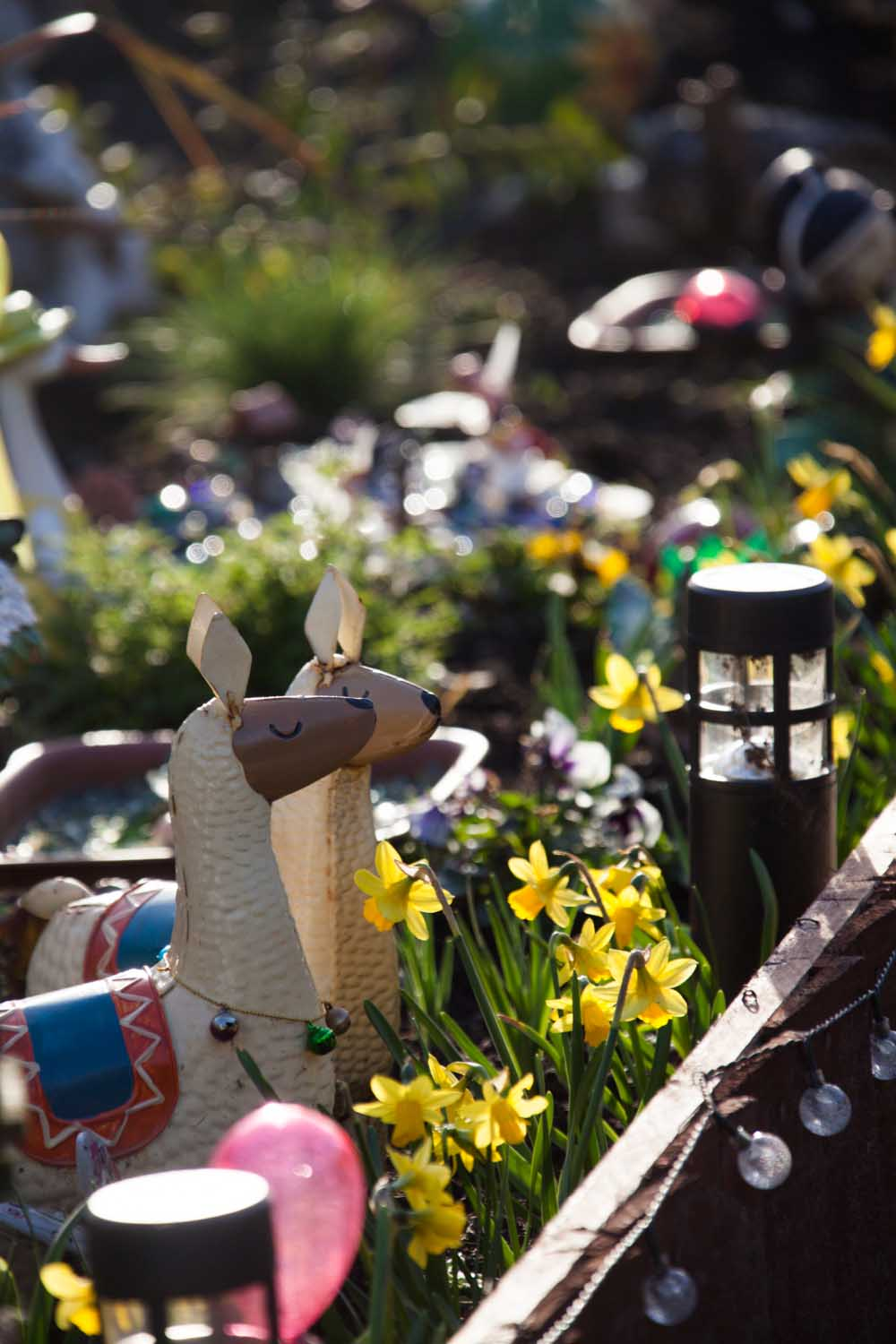 Picturesque spring view of a decorated garden front on Brassey's Contract Road, in the Cheshire parish of Edge.